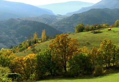 A Rougon (myvalleylil1) Tags: france var verdon campagne automne