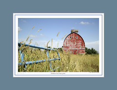 #163 NORTHERN IOWA RED GOTHIC (mdturn1) Tags: barns iowabarns oldbarns farming farm images photos history outbuildings farmshed cowshed shelter stable stall outhouse polebarn vintage classic heritage countryside historicbuildings oldfashioned nostalgic sentimentalfarm nostalgicmemories tradition rurallife rustic pastoral agricultural barnyard barnboard decor decorate decorating office home photoimages canvaspints galleryprints gallery
