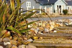The edge of the path (barronr) Tags: light england stone path yorkshire thebay beachhouse filey