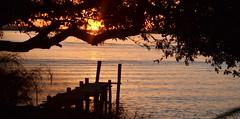 Golden Lake (Deisi Ferreira) Tags: sunset lake west water silhouette backlight pier nikon3100 goldenlake sundow