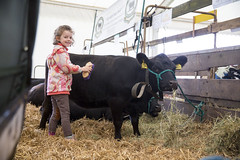Kent_County_Show_2014_005
