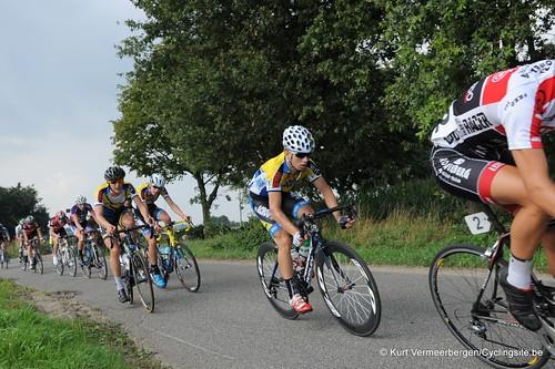 Geel Oosterlo  (213)