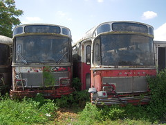 SAVIEM S 105 (marsupilami92) Tags: frankreich france sudouest poitoucharentes 16 charente casse dogimont autobus robin s105 saviem angoulême fléac