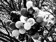 Museo Nacional (glamorous_disasters) Tags: balloons bogot museo globos nacional 191 aos