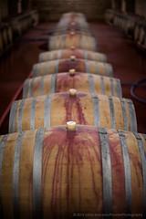 Filled barrels at Chateau Mukhrani - Travel DSC_4772.jpg (PowderPhotography) Tags: georgia 50mm oak nikon wine barrels f14 july tunnel stains vault nikkor chateau cellar 2014 spillage f14g d700 mukhrani
