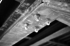 bolts and screws (Tommaso Gorla) Tags: blackandwhite bw screws bolt olympuspen biancoenero dado acciaio bullone olympuspenepl5 penepl5