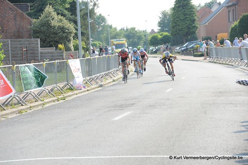 Geel Oosterlo  (350)