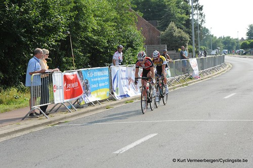 Geel Oosterlo  (305)
