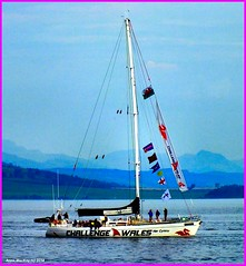 Scotland Greenock commonwealth games flotilla racing yacht Challenge Wales 26 July 2014 by Anne MacKay (Anne MacKay images of interest & wonder) Tags: by wales river anne scotland clyde greenock 26 yacht picture july games racing mackay commonwealth challenge flotilla 2014
