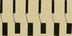 Anglų lietuvių žodynas. Žodis angina pectoris reiškia krūtinės angina lietuviškai.