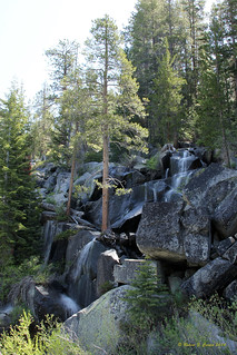 Waterfall Beside the Road - Yosemite National Park