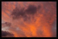 Sunset over Rosebank Peninsular (Zelda Wynn) Tags: newzealand sky orange nature weather clouds wind auckland cloudscape sunsetclouds troposphere weatherwatch zeldawynnphotography rosebankpeninsular
