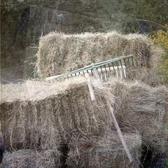 Dos rastrillos (acativa) Tags: rural flickr textures galicia campo cosecha texturas pacas 2014 rstico cotobade rastrillo cotobad