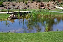 Charcas y lagunas (M. Martin Vicente) Tags: lagunas charcas jardínbotánicoatlánticodegijón
