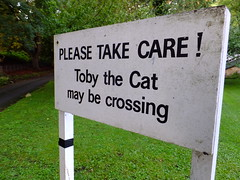 Toby the Cat (stevenbrandist) Tags: road sign cat warning wiltshire bradfordonavon thehall alexmoulton tobythecat holtroad moultonbicyclecompany