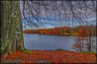 Autumn England2013
