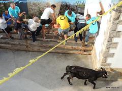 FiestasVispal14-060