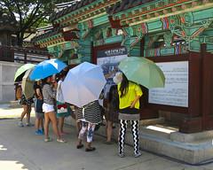 Umbrella Girls (Mondmann) Tags: travel girls asia korea shade seoul southkorea umbrellas rok koreans eastasia republicofkorea namsangolhanokvillage mondmann canonpowershots120