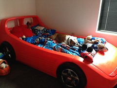 "Borrowing @Master_Everett's race car bed for a nap. If I look like a stuffed animal, maybe they won't notice. • <a style=""font-size:0.8em;"" href=""http://www.flickr.com/photos/73758397@N07/15085194036/"" target=""_blank"">View on Flickr</a>"
