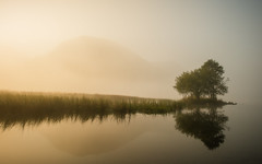 Brotherswater (Mark Littlejohn) Tags: nikon lakedistrict d800 brotherswater