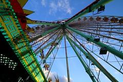 Ferris-wheel in Antwerp (Frans.Sellies) Tags: belgium ferriswheel antwerp  riesenrad antwerpen anvers rodagigante reuzenrad granderoue noria belgien pariserhjul  ruotapanoramica img0587