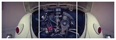Bugass triptych by ASHLANDJET - 1961 VW Bug Rolleiflex 3.5E/Planar Rollei panorama head Kodak Vericolor IIi 160, expired 1995