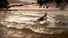 Yuda (Motographer) Tags: sunset dog canon twilight action dam reservoir monsoon germanshepherd karnataka mysore backwaters alsation krs cauvery 2470f28l motographer krishnarajasagara 5dmkiii fotografikartz motograffer