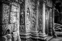 Cambodia (jpmiss) Tags: canon temple cambodge khmer laracroft siemreap angkor taprohm 6d tombrider jpmiss provincedesiemreap krongsiemreap