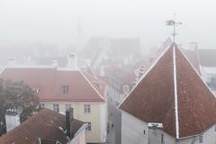 (Rait_Tuulas) Tags: eesti estonia tallinn oldtown urban street fog mist misty morning