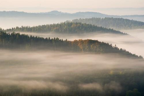 Atumn Fog