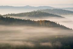 Atumn Fog (Gr@vity) Tags: mistelgau bayern deutschland fog autumn mist nebel neubürg fränkischeschweiz k1 pentax herbst fall