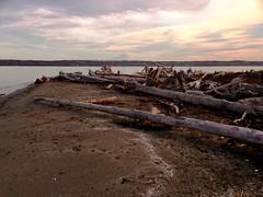 Mt Rainier (kkilli) Tags: mtrainiervashonislandseattle sunset driftwood clouds