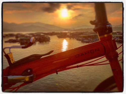 🚵單車遊遊遊🚵三門仔 #三門仔 #三門仔魚排 #SamMunTsai #船灣防波堤1號梯台 #大埔 #taipo #單車 #香港 #hongkong #hk #單車遊 #bicycle #bike #fahrrad #bicicleta #vélo #자전거 #велосипед #รถจักรยาน #自転車 #自行車#dahon #dahonbikes #dahonspeed#dahonspeedp8 #speedp8 #小摺