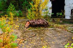 DSC_1500 (andrzej56urbanski) Tags: chernobyl czaes ukraine pripyat prypeć prypyat kyivskaoblast ua