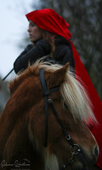 IMG_8386 (ObzidiaN Photo) Tags: little red riding hood icelandic horse horses pony hst hstar ponny fall autumn canon portrait