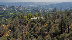 Those hills above Los Angeles (dog97209) Tags: those hills above los angeles south from griffith park obervatory mansions