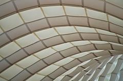 Gimme Shelter (mpardo.photo) Tags: shelter tent arcs pentaxart darktable gimp cc0 roof