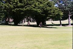 Fairway Blues (Denzel De Ruysscher) Tags: 35mm pentax colour film explore green golf nature trees grass sun