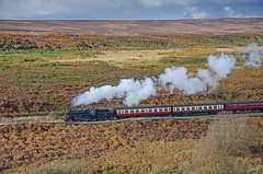Over the Moors (DWH284) Tags: northyorkmoorsrailway northyorkmoors 76084 brstandardclass4mt moorgates steamtrain moorland autumn