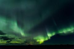 IMG_1349 (Mikl - Concept-Photo.fr (CRBR)) Tags: hverfjall auroreborale myvatn islanderoadtripautotourwildsauvagenature2016octobreoctober islanderoadtripautotourwildsauvagenature2016octobreoctob northernlight norurlandeystra islande is