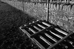 (Cheese_And_Wine) Tags: cheeseandwine blackandwhite 2470mm haworth perspective drystonewall