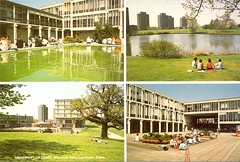 Around Campus (Essex University - Photographic Archive) Tags: ph35 essex campus colour multiple postcard fountain people lakes podia squares nature trees towers library physics