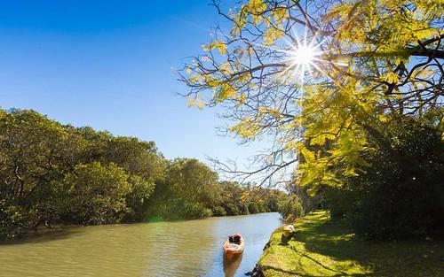 116 Siandra Drive, Kareela NSW 2232