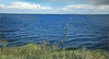 L'Ijmeer, sur la digue entre la Gouwzee et l'Ijmeer bers la presqu'ïle de Marken, Nederland (claude lina) Tags: claudelina nederland netherlands paysbas hollande ijmeer