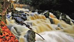 'The Guinness Waterfall' (Gerard Joseph Christopher) Tags: ireland crumlin glen waterfall county antrim guinness river golden magical irishman dream landscape celtic irish autumn wish