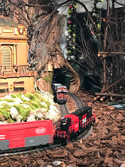 HTS-23 (Peter Parides) Tags: unitedstates christmas trains newyorkbotanicalgardens new york city newyork