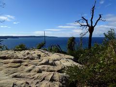 Barrenjoey (enjosmith) Tags: sydney barrenjoey rock sky blue tree