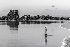Back to Black  - Vestígios (rqserra) Tags: bw praia beach agua water achados find rochas rocks rqserra natal brazil amy amywinehouse