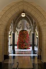 IMG_9605-Edit.jpg (www.jeffco.ca) Tags: parliamentbuildings parliamenthill parliament