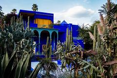 Jardin Majorelle (jack9686) Tags: marocco fes marrakech mosquee tajine kobra cobra jeemaaelfnaa
